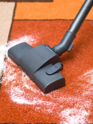 Carpet odor removal by Certified Green Team