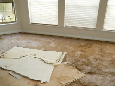 Water damage restoration in Fort Lauderdale by Certified Green Team