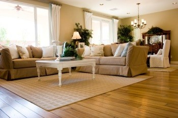 Area rug cleaning in Miami Shores by Certified Green Team