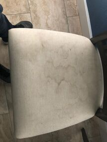 Before & After Upholstery Cleaning in Fort Lauderdale, FL (1)
