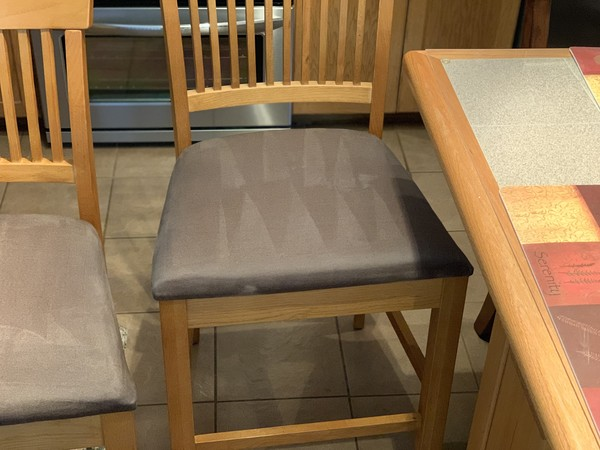 Upholstery Cleaning in Pembroke Pines, FL (1)